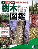 樹木図鑑―葉・実・樹皮で確実にわかる (実用BEST BOOKS)