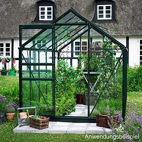 Juliana Halls Popular 66 Gewächshaus grün mit 3 mm Blankglas - 3,8 qm