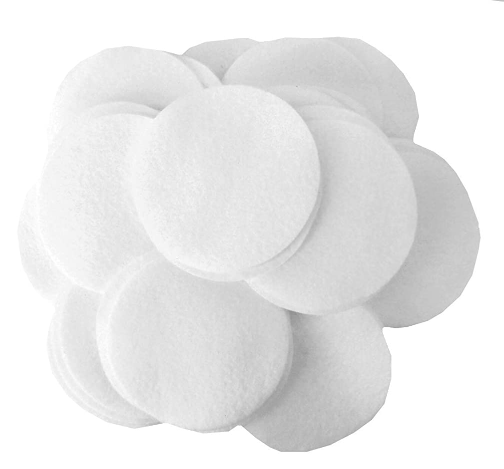 Playfully Ever After 4 Inch White 19pc Felt Circles