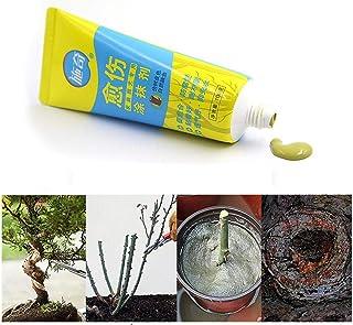xluckx Tree Wound Bonsai Cut Paste Smear Agent Poda Sellador Compuesto con Cepillo Proficient