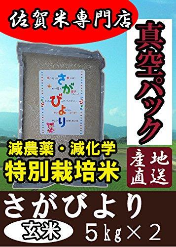 真空パック  特別栽培米 佐賀県産 さがびより 玄米 5kg×2 令和2年産