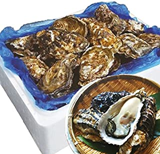 殻付き牡蠣 生食用 宮城県産 無選別 (5kg 約40-70個)