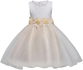 11217ee2e Logobeing Vestido de Flores para Niña Vestido Elegante Boda Fiesta de La  Dama de Honor Princesa
