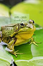 2019 - 2020 18 month planner: July 19 - Dec 20. Monday start week. Monthly and weekly planner with TO-DOS. Includes Important dates, 2021 Future ... 8.5' x 5.5'. (Portable) (Green frog cover).