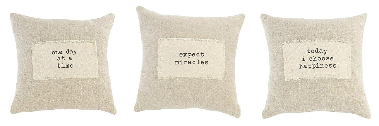 正規化歴史的賞1日で時間Expect Miracles Choose Happiness paz-itive枕のセット3