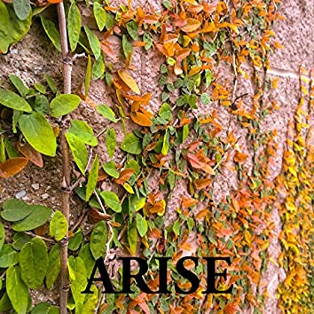 Arise (Freestyle Hour Vol. 10)