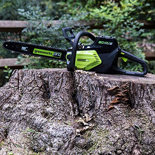Greenworks PRO 16-Inch 80V Brushless Chainsaw with 2.0 AH Battery Included CS80L211