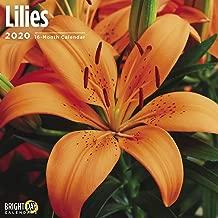 2020 Lilies Calendar 16 Month 12 x 12 Wall Calendar by Bright Day Calendars (Floral/Flower Calendar Collection)