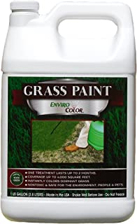 4,000 Sq Feet 4Ever Green Grass and Turf Paint