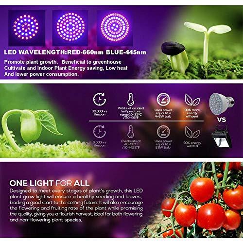 Led Grow Light Bulb, 2835 LED Led Plant Bulb Full Spectrum Grow Lights Voor Kamerplanten Groenten En Zaailingen, LED Plant Light Bulb Voor Hydrocultuur Indoor Garden Greenhouse And Organic Soil