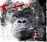 Songtexte von Shaka Ponk - The White Pixel Ape (Smoking Isolate to Keep in Shape)