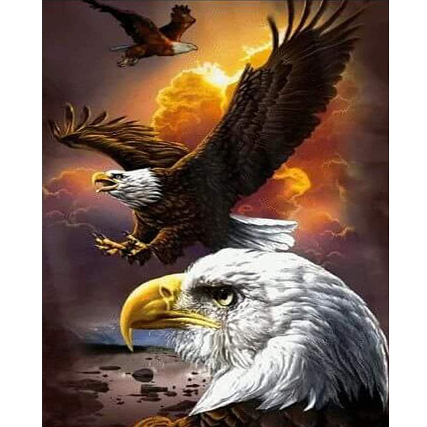 DIY 5D Diamond Painting Kits for Adults ,Full Drill Diamond Embroidery Dotz Kit Home Wall Decor(Eagle 11.8 x 15.8 in)