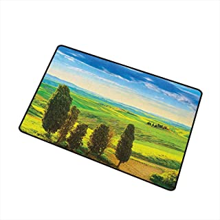 Wang Hai Chuan Nature Welcome Door mat Rural Sunset in Italy Countryside with Trees Fresh Meadows and Clear Sky Image Print Door mat is odorless and Durable W19.7 x L31.5 Inch Blue Green