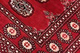Nain Trading Pakistan Buchara 2ply 231x76 Orientteppich Teppich Läufer Rost/Rosa Handgeknüpft Pakistan - 8