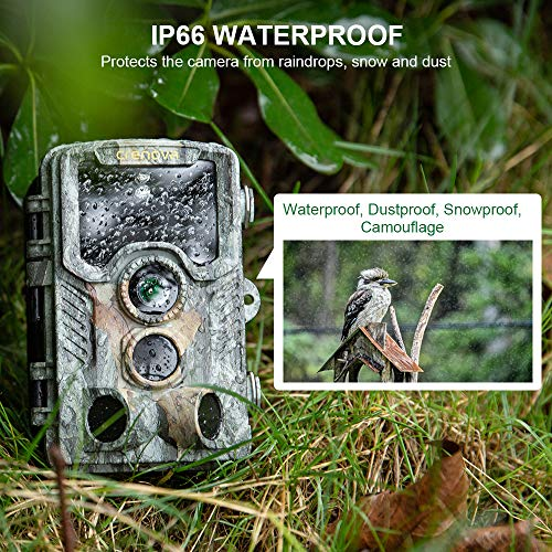 """Crenova Trail Camera with 32GB SD Card 20MP 1080P IP66 Waterproof Night Vision Game Hunting Cam for Wildlife Scouting Monitoring with 47pcs 940nm No Glow LED 120° 65 ft Detection Range 2.4"""" LCD"""