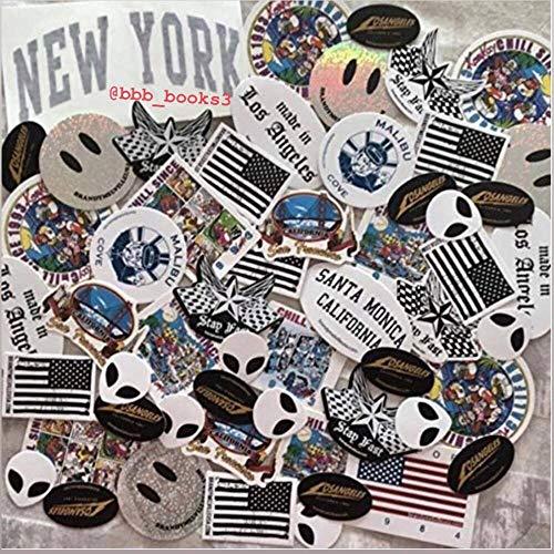 Brandy Melville 50 Random Stickers VSCO Hydroflask Laptop Notebook Decorations New York Chill California   Repeats