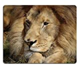 Lion Face Big Cat Eyes Mouse Pads Customized Made to Order Support Ready 9 7/8 Inch (250mm) X 7 7/8 Inch (200mm) X 1/16 Inch (2mm) Eco Friendly Cloth with Neoprene Rubber Liil Mouse Pad Desktop Mousepad Laptop Mousepads Comfortable Computer Mouse Mat Cute Gaming Mouse pad