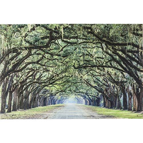 Glasbild Avenue of Trees 120 x 80 cm Kare Design