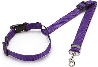 Suchergebnis Auf Für Sicherheitsgeschirre Für Hunde Violett Sicherheitsgeschirre Geschirre Haustier