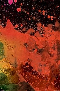 Pyramid America Radiohead in Rainbows Music Cool Wall Decor Art Print Poster 12x18
