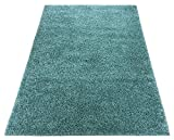 Shaggy Collection Solid Color Shag Rug Area Rugs Options Available (Light Teal Blue, 5'x7')