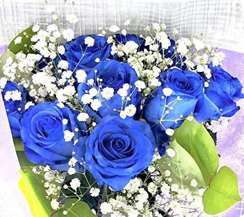【生花花束】 青バラ 「奇跡」「神の祝福」プロポーズ 誕生日 記念日 花束 青いバラ花束 ベンデラ 薔薇 宅配送 お祝 ギフト プレゼント 送別会 退職祝いカスミ草、グリーン付き バラの花束(10本)