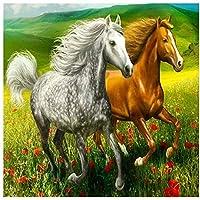 大人用パズル5000ピース草原を走る2頭の馬3X硬度素材ジグソーパズル5000ピース156.5×105.5cm