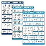 QuickFit 3 Pack - Dumbbell Workouts + Bodyweight Exercises + Stretching Routine Poster Set - Set of 3 Workout Charts (Laminated, 18' x 27')