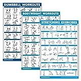 QuickFit Hanteltraining + Bodyweight Übungen + Stretching Routine Poster Set mit 3 Workouts (laminiert, 45,7 x 68,6 cm)