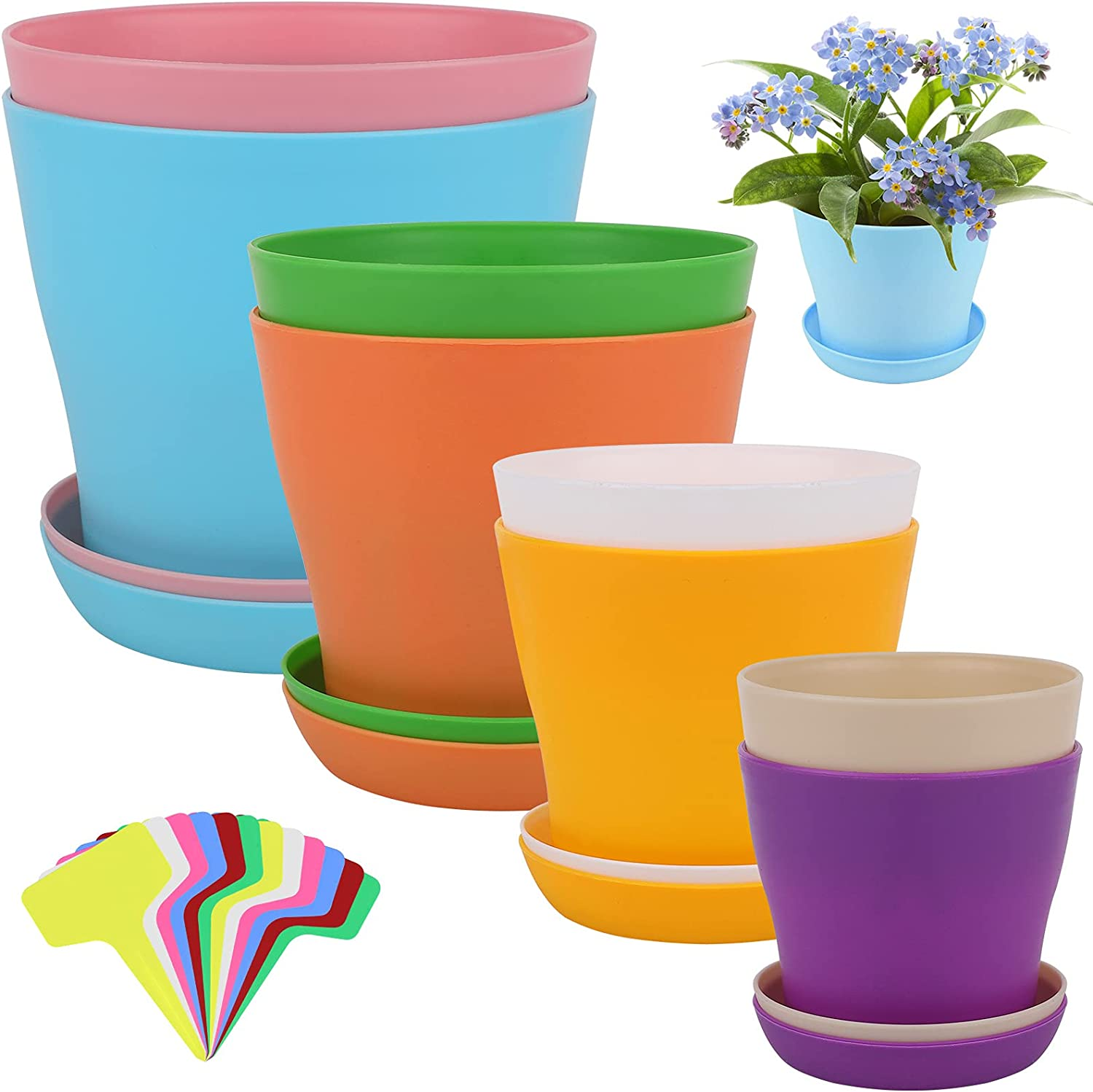 ADXCO 8 Pack Colorful Plastic Planters Small Plant Pots Flower Seedling Nursery Pots for Your Room, House Desk, Office, Garden Decor with Pallet