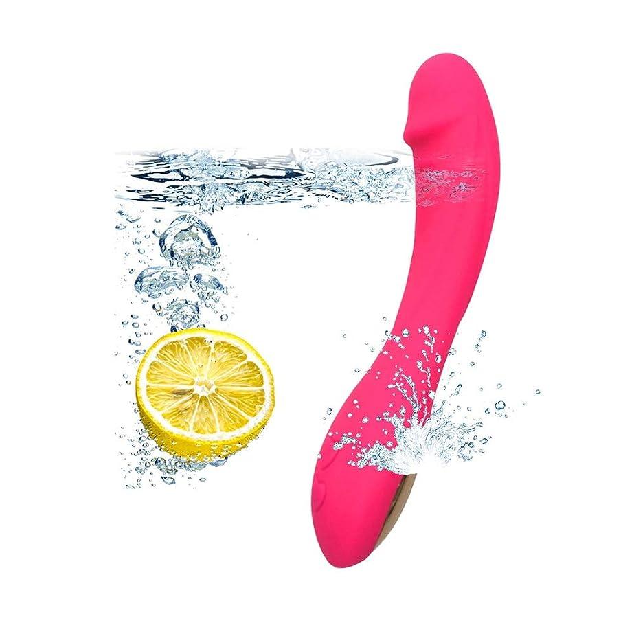 仮定協会意見NZSZMHS 現実的なシリコーンの女性の活気に満ちたおもちゃ再充電可能な初心者が付いている12の速度の小型杖USBの再充電可能な防水シリコーンのマッサージャー