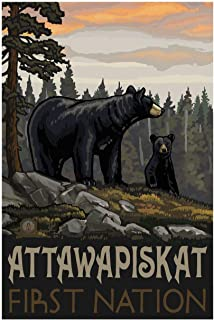 Attawapiskat Black Bear Ontario Canada First Nation Giclee Art Print Poster from Original Travel Artwork by Artist Paul A....