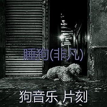 睡狗(非凡)