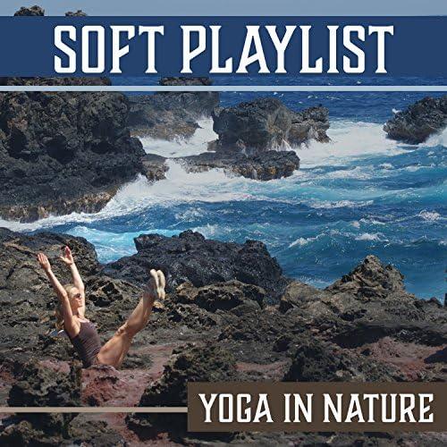 Namaste Yoga Group