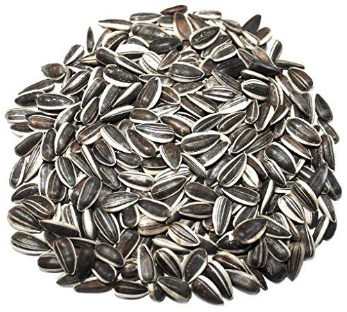 dobar de graines de Tournesol pour Oiseaux de Sacs, ganzjähriges Mangeoire à Oiseaux Sauvages Gemme, 1er Pack (1 x 20 kg)