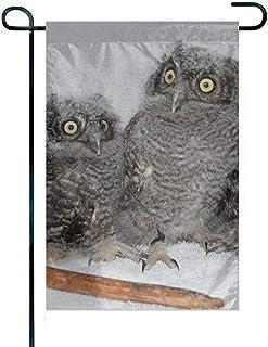 A-Generic Home Flag Seasonal Garden Flag Concise Flags Outdoor Owl Bird Baby Owlet Funny Yard Flag