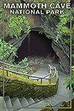 Mammoth Cave, Kentucky - Entrance (9x12 Art Print, Wall Decor Travel Poster)