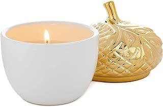 Hallmark Spiced Harvest Ceramic Acorn Candle, 6 oz.