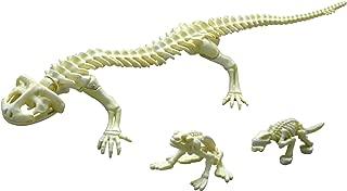 Re-Ment Pose Skeleton Reptile Amphibious No. 204 Giant salamander 1/18 scale figure (Japan Import)