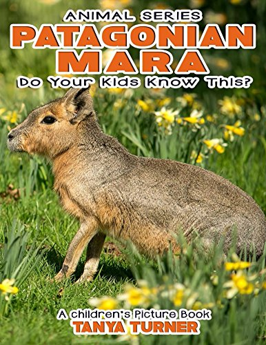 PATAGONIAN MARA Do Your Kids Know This?: A Children's Picture Book (Amazing Creature Series 29) (English Edition)