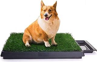 Sailnovo Hundeklo Hunde Toilette Echtem Rasen Welpentoilette Trainingsunterlage für Kleine Hunde Grosse Hunde ältere Hunde Tier WC Indoor 63 x 50x 7(L x B x H) cm