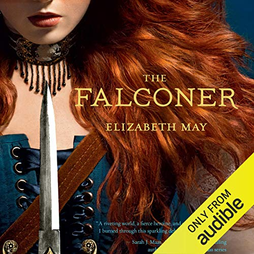 Couverture de The Falconer