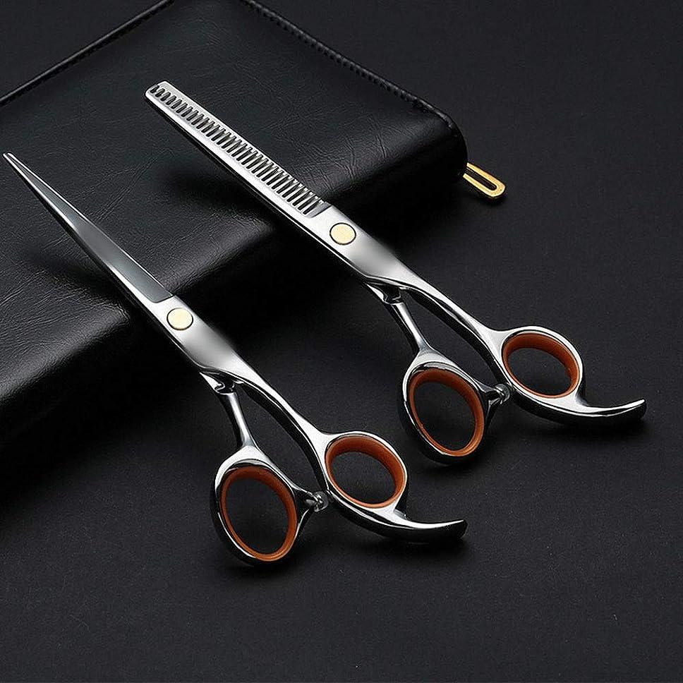ピジン険しい豚6.0インチの専門の理髪はさみ、平らなシザー+歯はさみ理髪セット モデリングツール (色 : Silver)