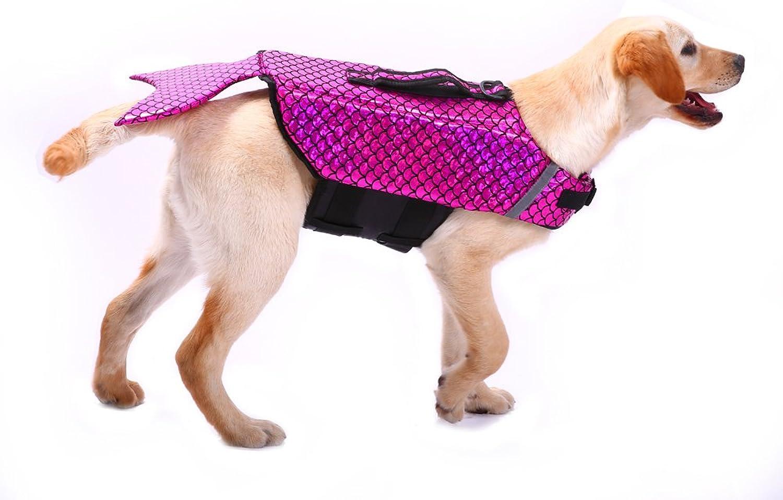 QBLEEV Reflective Stripes Dog Life Vest,Pet Floatation Jacket Float Coat, Quick Release Lifesaver Preserver Swimming Suit Adjustable Belt Harness Pool Boat (pink S)