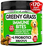 Best Dog Urine Neutralizers - Natural Grass Saver for Dogs - 170 Soft Review