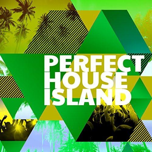 Perfect House Island