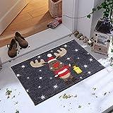 Salonloewe Fußmatte Weihnachten Elch Rudi mit Laterne Schmutzfangmatte waschbar rutschfeste Fussmatte für Jede Haustür aussen + innen 50x75 cm anthrazit rot - 2