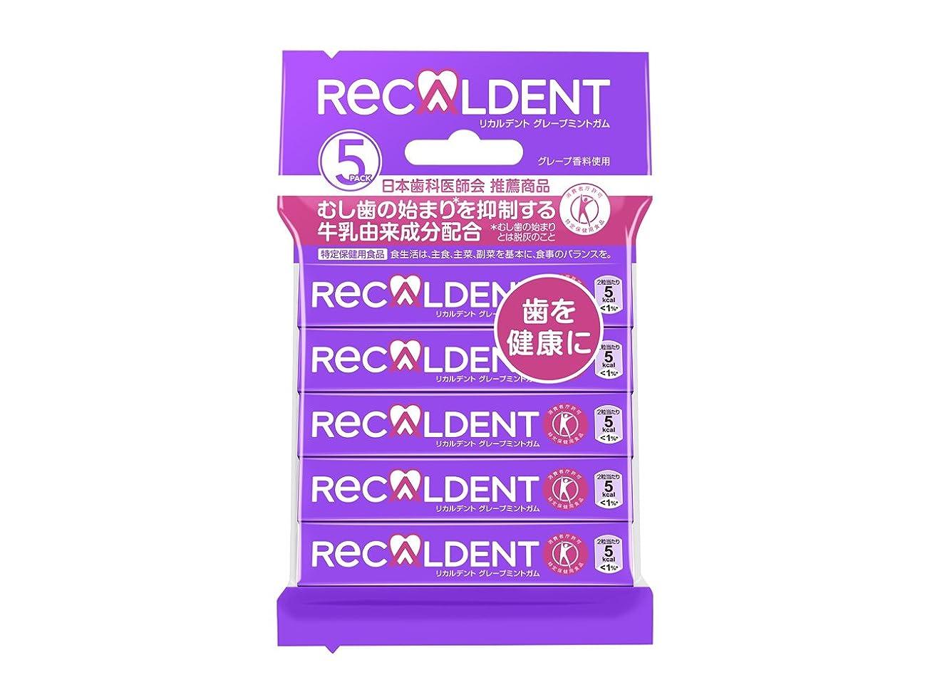 パス花瓶レシピ【トクホ】モンデリーズ?ジャパン リカルデントグレープミントガム 14粒×5本