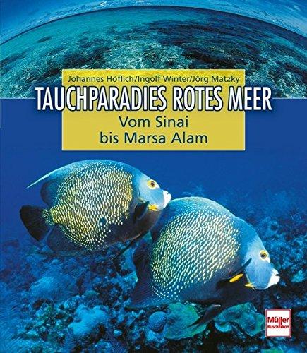 Tauchparadies Rotes Meer: Von Sinai bis Marsa Alam: Vom Sinai bis Marsa Alam