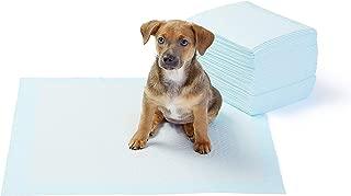 Amazon.es: Accesorios para viajar con perros - Transportadoras y ...